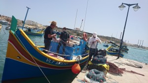 maltes6